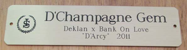 HEAVY BRASS STALL SIGN