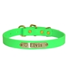 BETA DOG COLLAR WITH NAMEPLATE