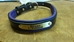 PADDED LEATHER DOG COLLAR - DC100